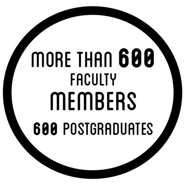 More than 600 faculty members