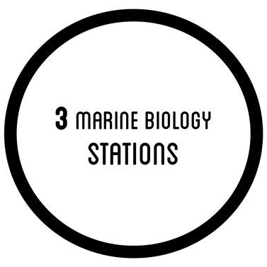3 marine biotechnology station
