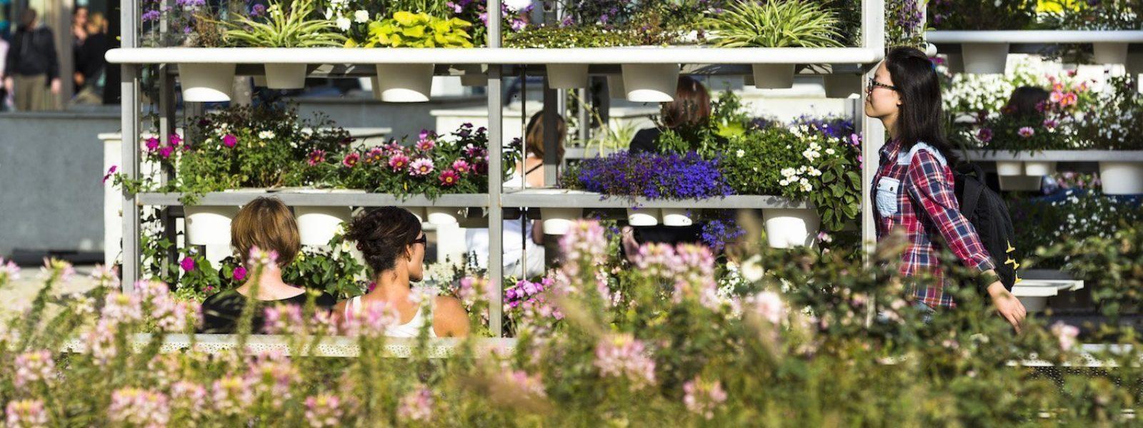 Rennes élue capitale française de la biodiversité en 2016